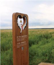 湿地景区标识牌